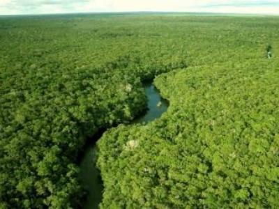 Lei de aplicação dos recursos de compensação ambiental é publicada