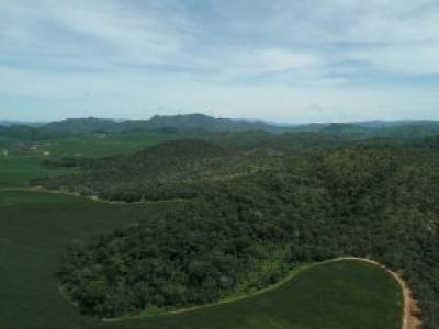 Última semana de inscrições para Legado Verdes do Cerrado, da (CBA) Companhia Brasileira de Alumínio